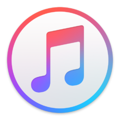 The current iTunes logo, which frankly I despise, but haven't yet gotten around to swapping back to the less gross old blue one. Hell, I;d be happy if this one was in greyscale.