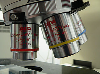 The objective lenses of a typical school laboratory microscope, courtesy of Wikimedia Commons.